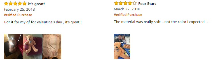 bear_review
